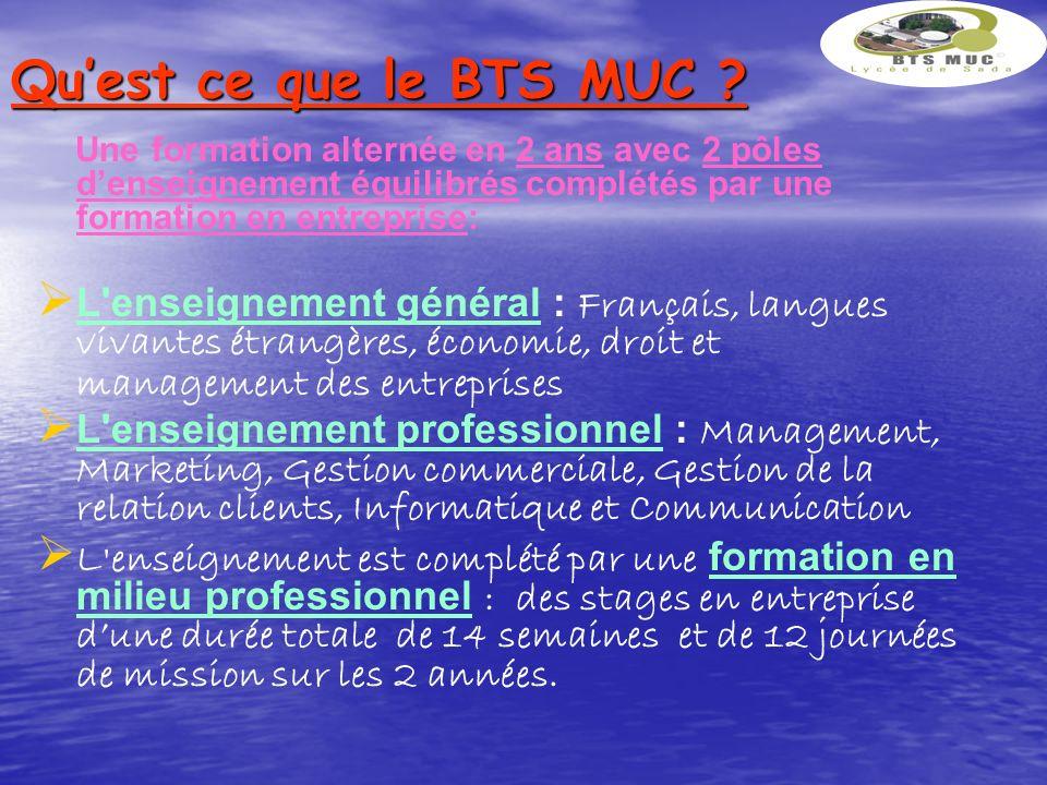 Témoignages Le BTS MUC est une excellente formation pour créer son entreprise » Ibrahim Roukbal, promotion 2010.
