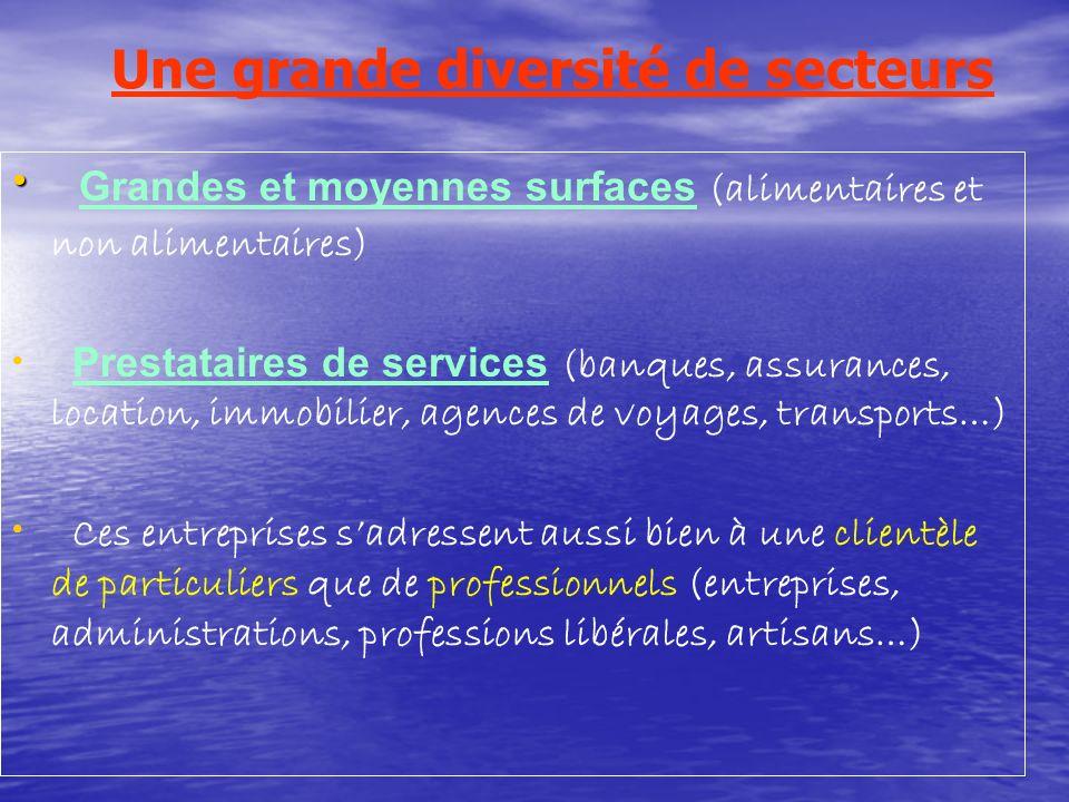Une grande diversité de secteurs Grandes et moyennes surfaces (alimentaires et non alimentaires) Prestataires de services (banques, assurances, locati