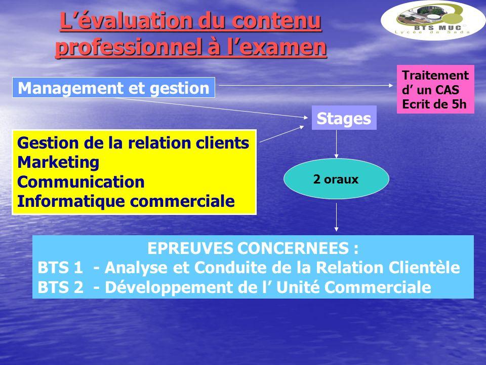 Lévaluation du contenu professionnel à lexamen Management et gestion Gestion de la relation clients Marketing Communication Informatique commerciale S