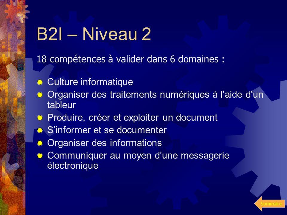 Sommaire B2I – Niveau 1 18 compétences à valider dans 5 domaines : Maîtriser les premières bases de la technologie informatique. Adopter une attitude