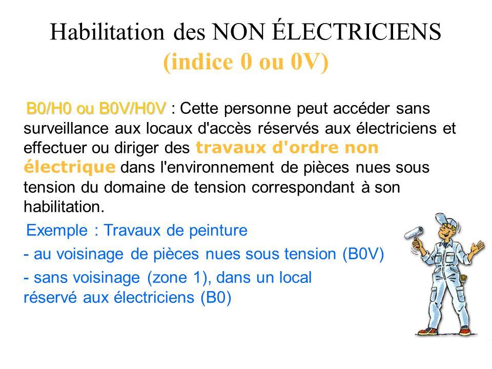 B0/H0 ou B0V/H0V B0/H0 ou B0V/H0V : Cette personne peut accéder sans surveillance aux locaux d'accès réservés aux électriciens et effectuer ou diriger