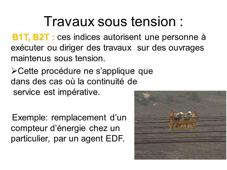 Travaux sous tension : B1T, B2T : B1T, B2T : ces indices autorisent une personne à exécuter ou diriger des travaux sur des ouvrages maintenus sous ten
