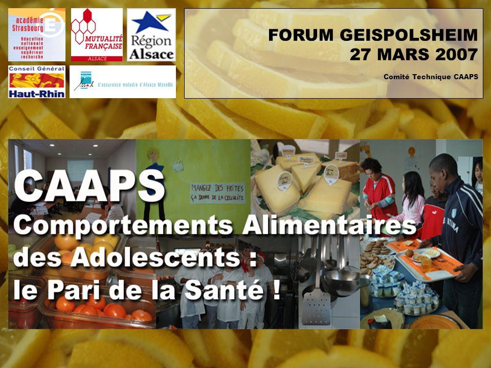 FORUM GEISPOLSHEIM 27 MARS 2007 Comité Technique CAAPS