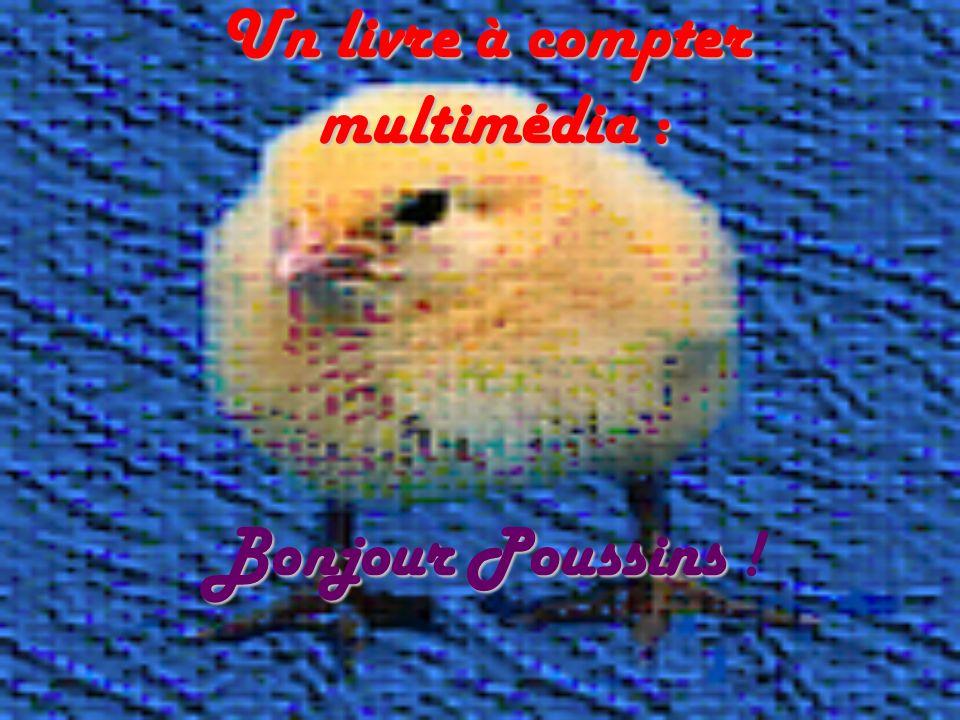 Un livre à compter multimédia : Bonjour Poussins Un livre à compter multimédia : Bonjour Poussins !