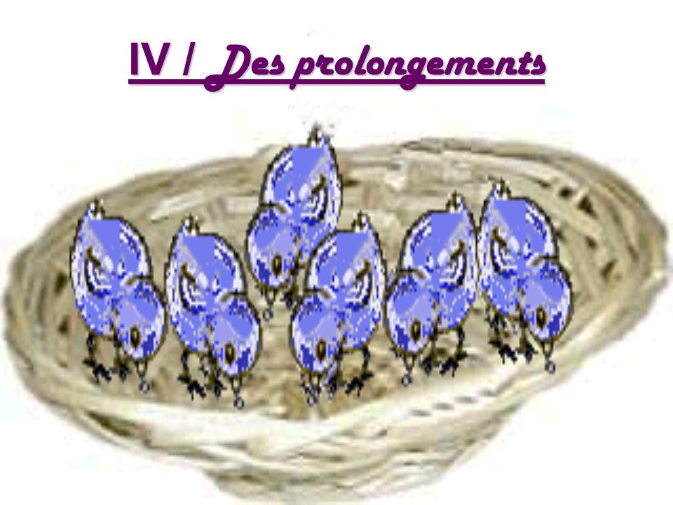 IV / Des prolongements