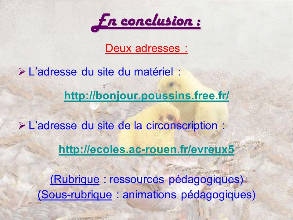 En conclusion : Deux adresses : Ladresse du site du matériel : http://bonjour.poussins.free.fr/ Ladresse du site de la circonscription : http://ecoles.ac-rouen.fr/evreux5 (Rubrique : ressources pédagogiques) (Sous-rubrique : animations pédagogiques)