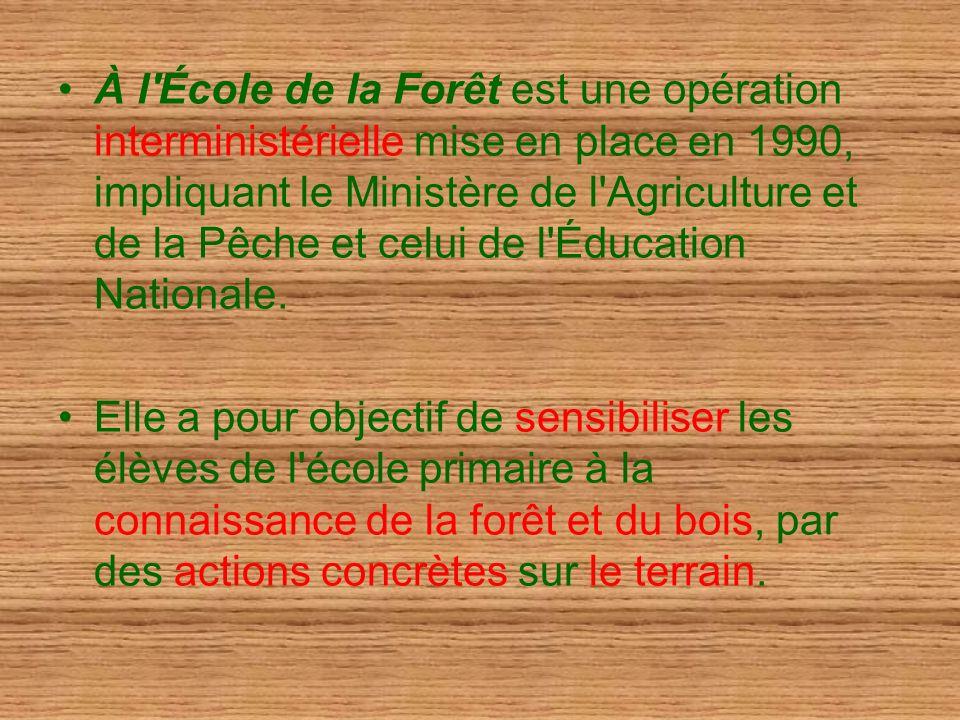 À l'École de la Forêt est une opération interministérielle mise en place en 1990, impliquant le Ministère de l'Agriculture et de la Pêche et celui de