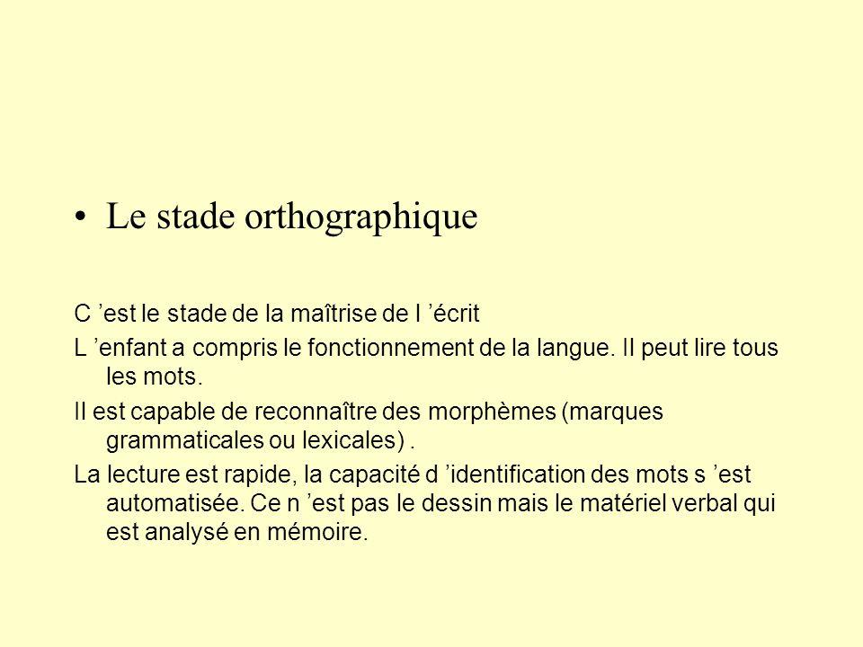 Le stade orthographique C est le stade de la maîtrise de l écrit L enfant a compris le fonctionnement de la langue. Il peut lire tous les mots. Il est