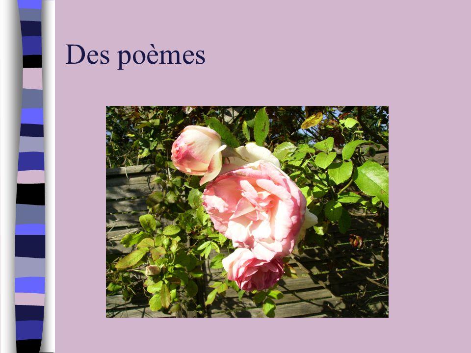 Des poèmes