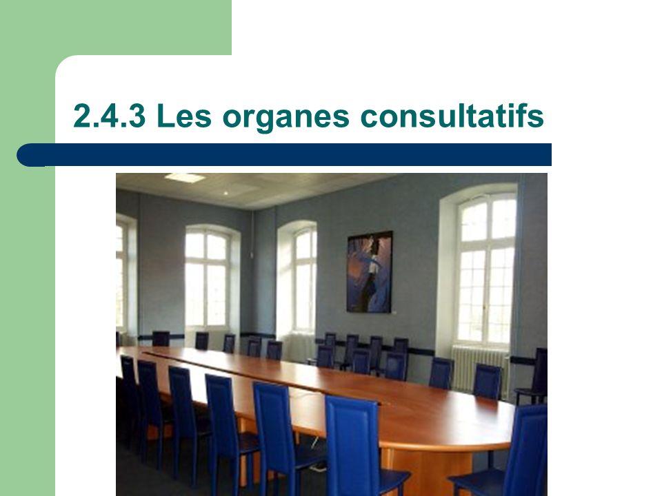 2.4.3 Les organes consultatifs