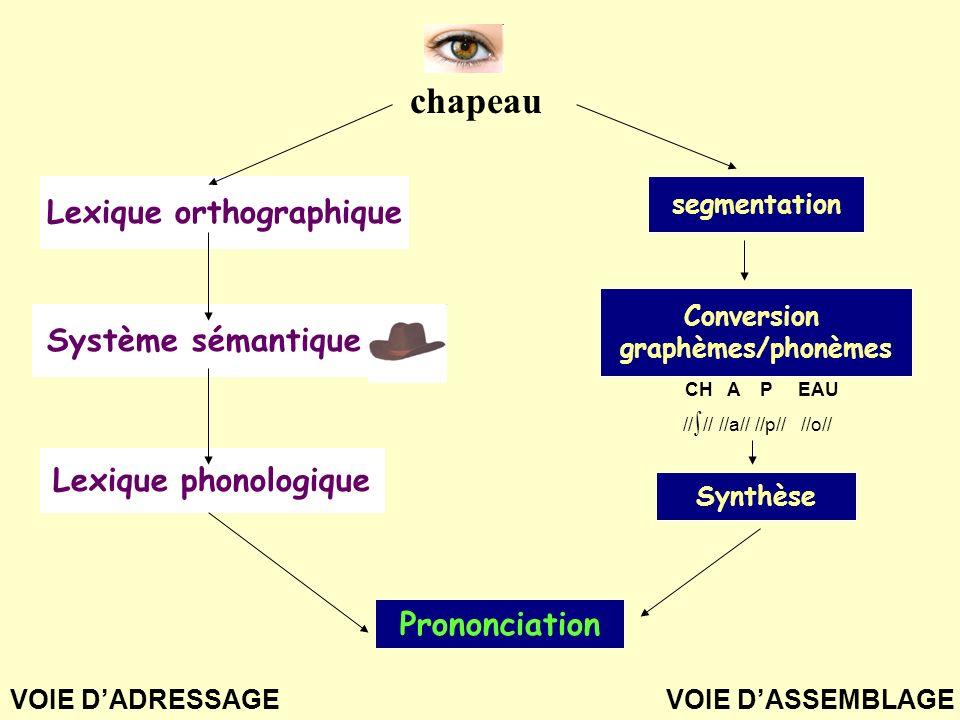 segmentation Conversion graphèmes/phonèmes chapeau Synthèse Lexique orthographique Système sémantique Lexique phonologique Prononciation CH A P EAU //