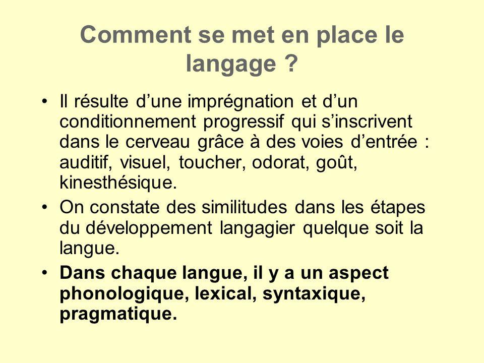 Comment se met en place le langage ? Il résulte dune imprégnation et dun conditionnement progressif qui sinscrivent dans le cerveau grâce à des voies