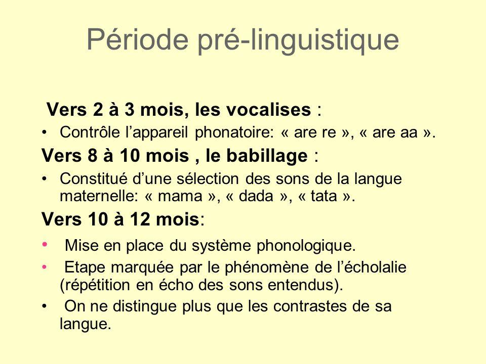 Entrer dans le code le plutôt possible Développer la conscience phonologique sur la syllabe, Faire le lien quantité doral/quantité décrit, Comprendre le nom et le son des lettres de lalphabet, Mettre en place la méthode par imprégnation syllabique