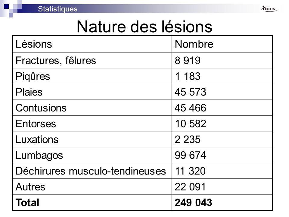 Nature des lésions LésionsNombre Fractures, fêlures8 919 Piqûres1 183 Plaies45 573 Contusions45 466 Entorses10 582 Luxations2 235 Lumbagos99 674 Déchi
