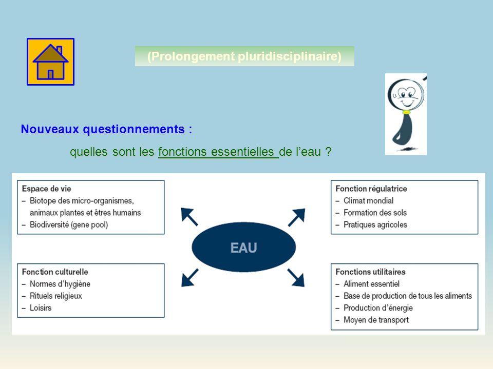 Nouveaux questionnements : quelles sont les fonctions essentielles de leau ? (Prolongement pluridisciplinaire)