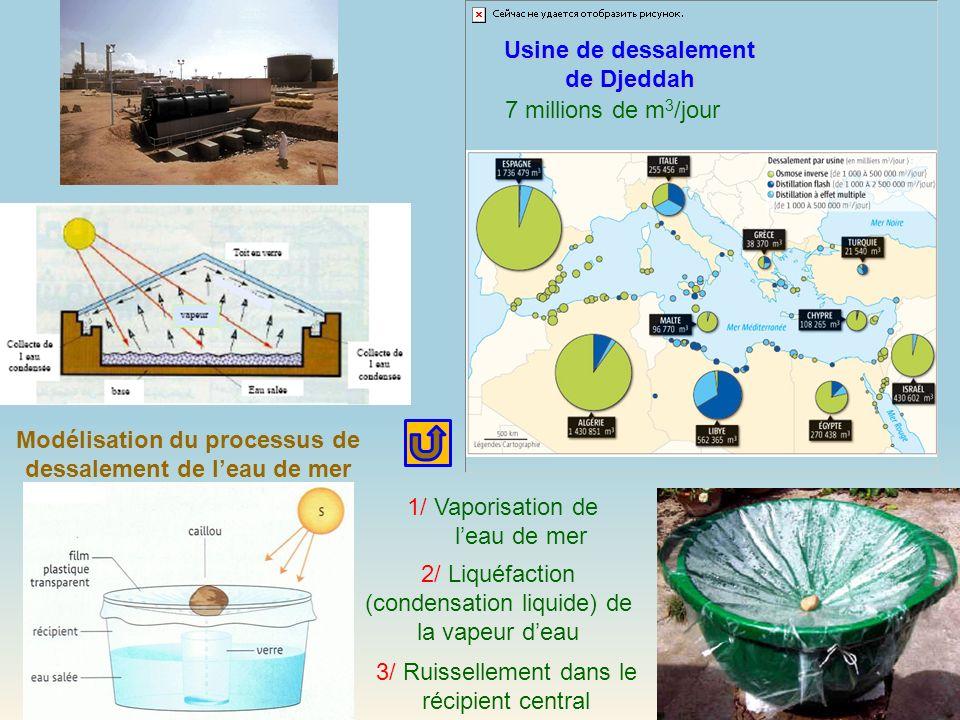 1/ Vaporisation de leau de mer 2/ Liquéfaction (condensation liquide) de la vapeur deau 3/ Ruissellement dans le récipient central Modélisation du pro