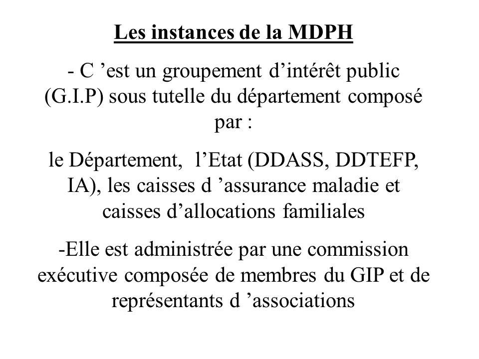 Les instances de la MDPH - C est un groupement dintérêt public (G.I.P) sous tutelle du département composé par : le Département, lEtat (DDASS, DDTEFP,