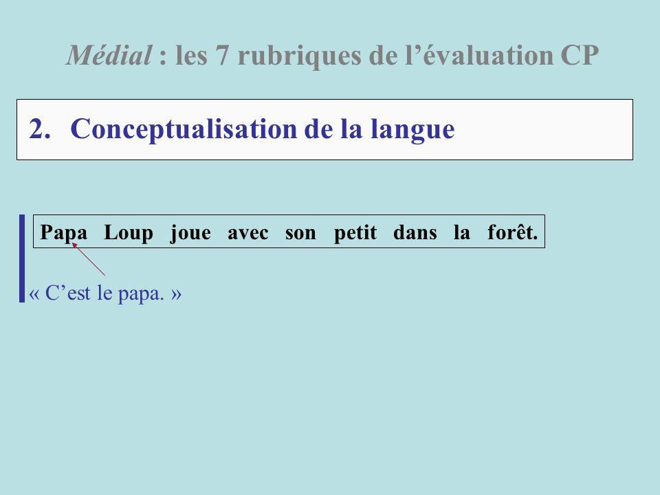 2. Conceptualisation de la langue Médial : les 7 rubriques de lévaluation CP Papa Loup joue avec son petit dans la forêt. « Cest le papa. »