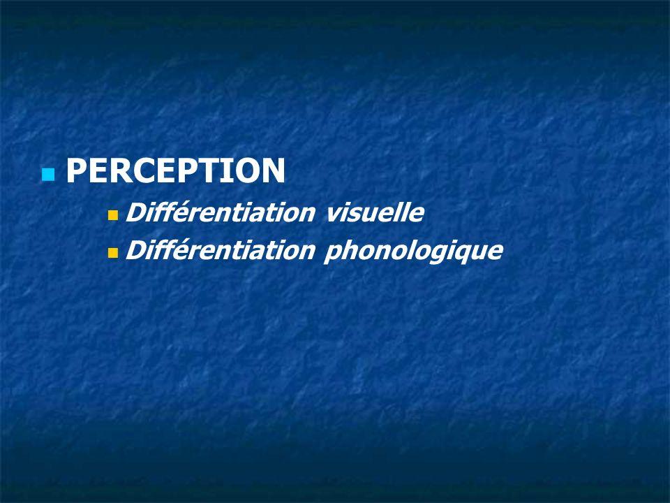MOTRICITE Exploration visuelle Latéralisation Orientation de lespace
