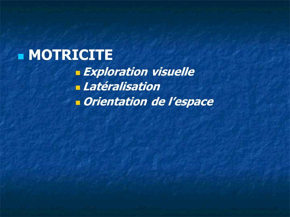 ATTENTION Auditive Visuelle Praxique