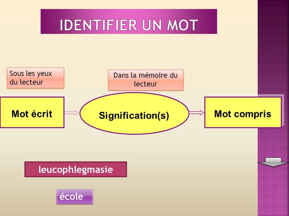 Mot écrit Signification(s) Mot compris Sous les yeux du lecteur Dans la mémoire du lecteur école leucophlegmasie
