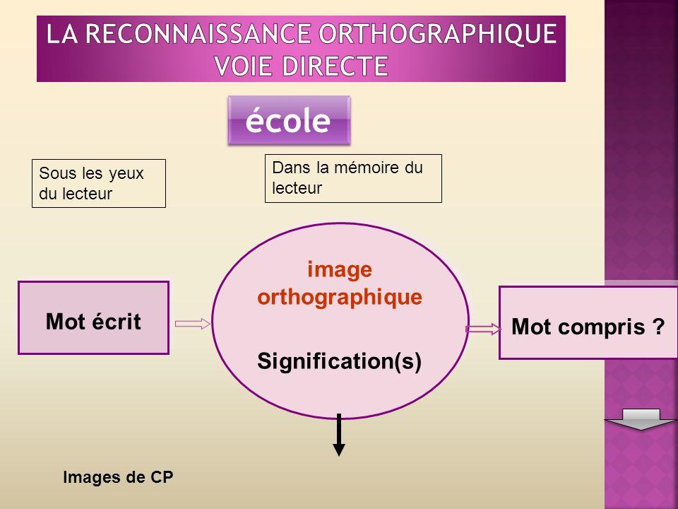Mot écrit image orthographique Signification(s) image orthographique Signification(s) Mot compris .