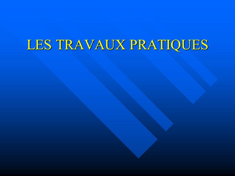 LES TRAVAUX PRATIQUES