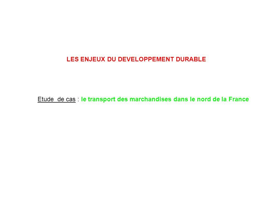 LES ENJEUX DU DEVELOPPEMENT DURABLE Etude de cas : le transport des marchandises dans le nord de la France