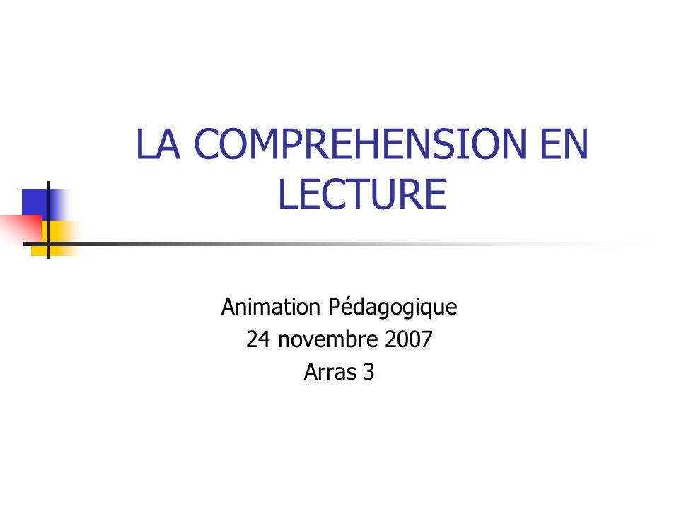 LA COMPREHENSION EN LECTURE Animation Pédagogique 24 novembre 2007 Arras 3
