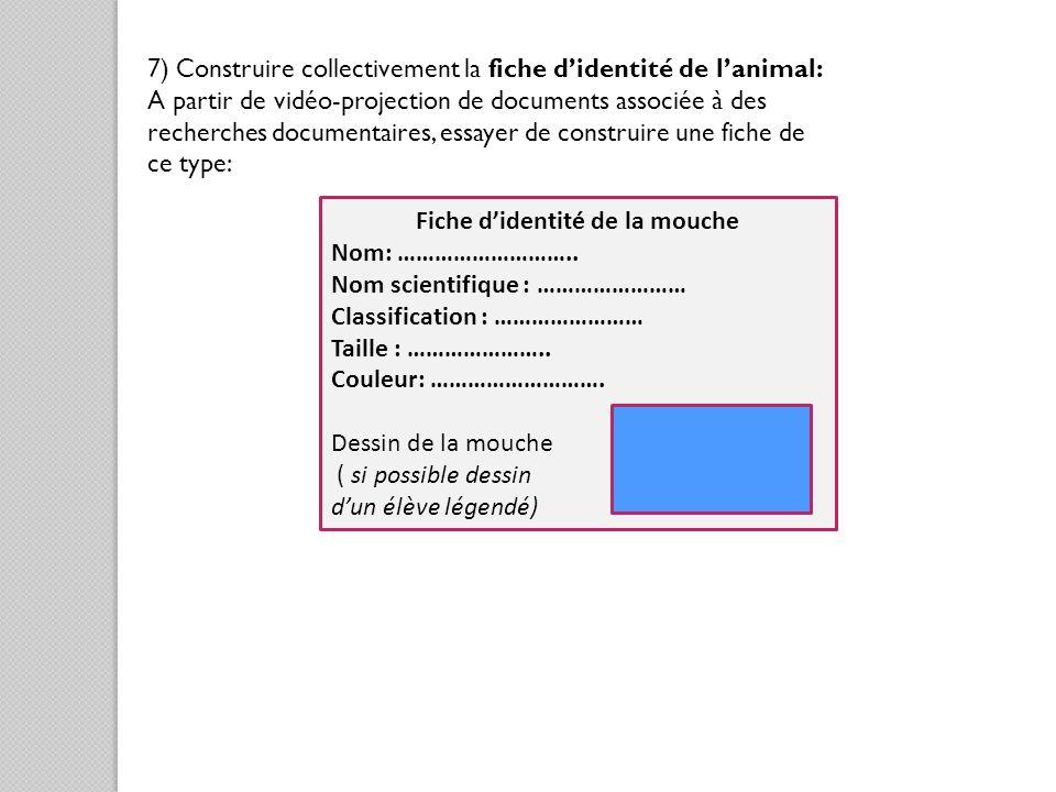 7) Construire collectivement la fiche didentité de lanimal: A partir de vidéo-projection de documents associée à des recherches documentaires, essayer