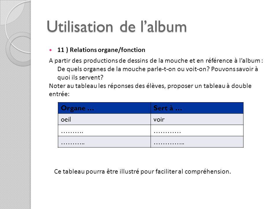 Utilisation de lalbum 11 ) Relations organe/fonction A partir des productions de dessins de la mouche et en référence à lalbum : De quels organes de l