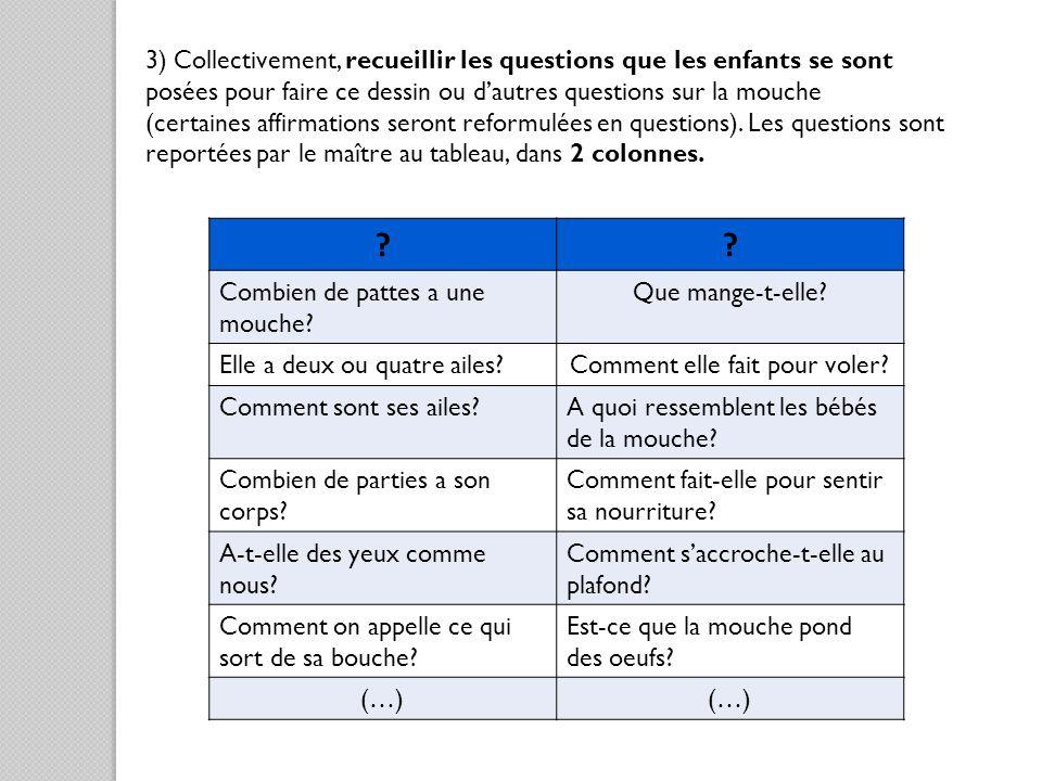 3) Collectivement, recueillir les questions que les enfants se sont posées pour faire ce dessin ou dautres questions sur la mouche (certaines affirmat