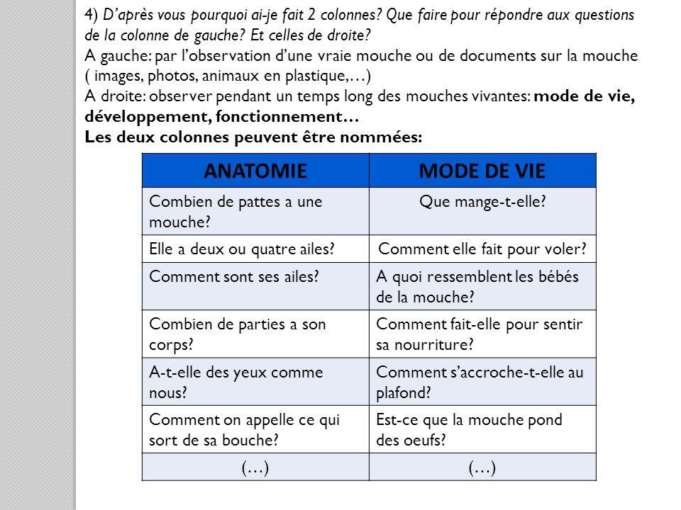 4) Daprès vous pourquoi ai-je fait 2 colonnes? Que faire pour répondre aux questions de la colonne de gauche? Et celles de droite? A gauche: par lobse