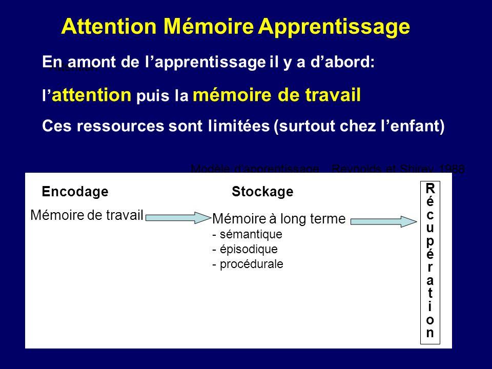 Attention Modèle dapprentissage Reynolds et Shirey 1988 EncodageStockage RécupérationRécupération Mémoire de travail Mémoire à long terme - sémantique