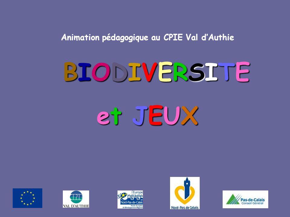 BIODIVERSITE et JEUX et JEUX Animation pédagogique au CPIE Val dAuthie