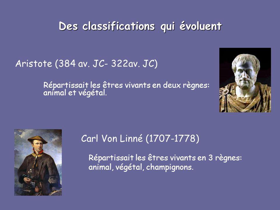 Des classifications qui évoluent Aristote (384 av. JC- 322av. JC) Répartissait les êtres vivants en deux règnes: animal et végétal. Carl Von Linné (17