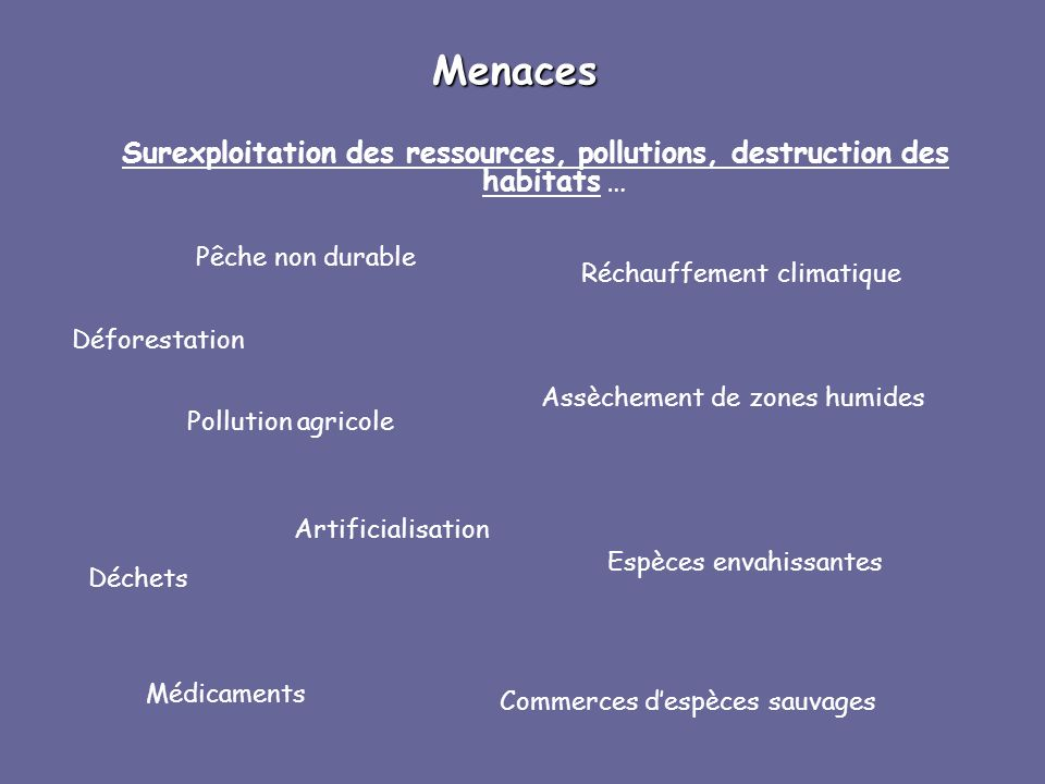 Menaces Surexploitation des ressources, pollutions, destruction des habitats … Pollution agricole Déchets Médicaments Commerces despèces sauvages Espè