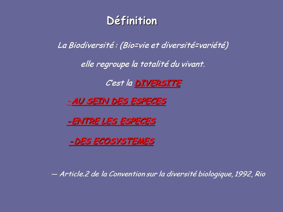 Définition La Biodiversité : (Bio=vie et diversité=variété) elle regroupe la totalité du vivant. DIVERSITE Cest la DIVERSITE AU SEIN DES ESPECES -AU S