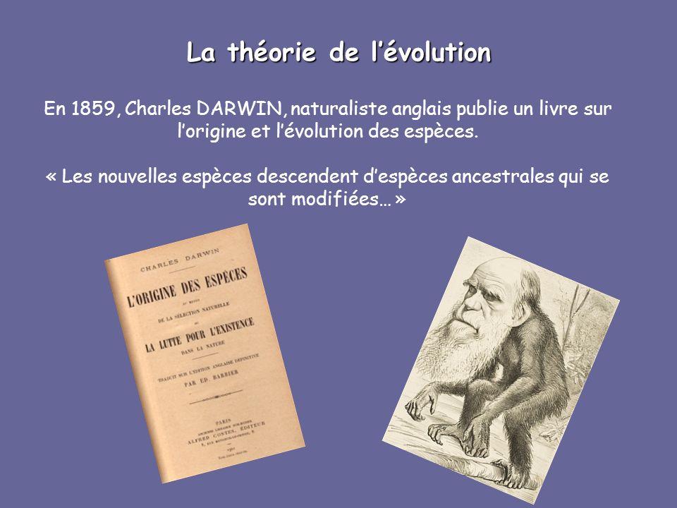 En 1859, Charles DARWIN, naturaliste anglais publie un livre sur lorigine et lévolution des espèces. « Les nouvelles espèces descendent despèces ances