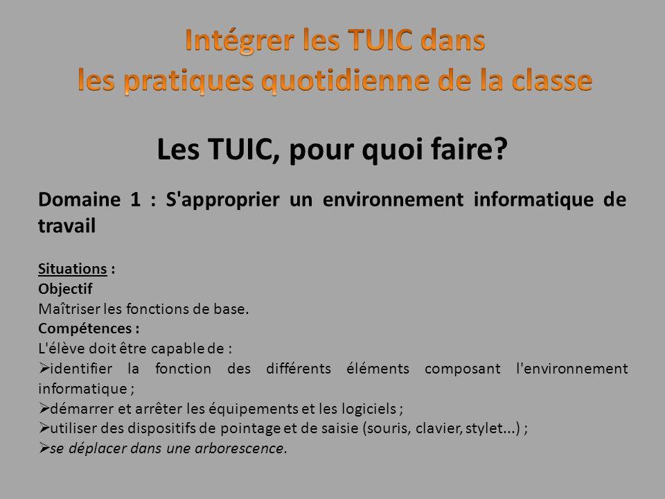 Les TUIC, pour quoi faire? Domaine 1 : S'approprier un environnement informatique de travail Situations : Objectif Maîtriser les fonctions de base. Co