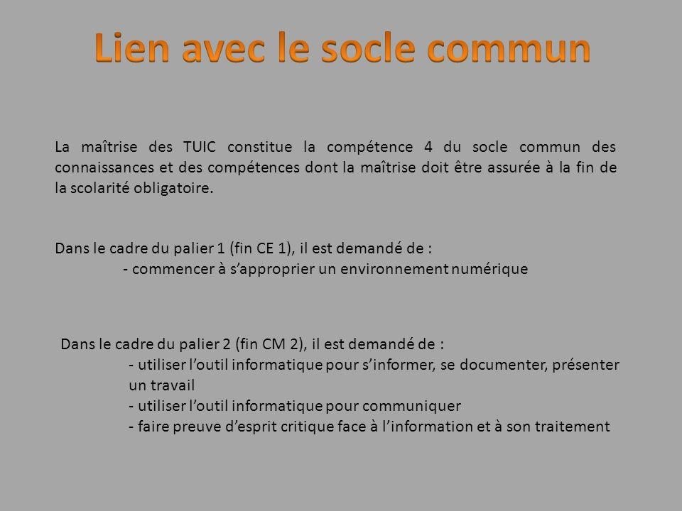 La maîtrise des TUIC constitue la compétence 4 du socle commun des connaissances et des compétences dont la maîtrise doit être assurée à la fin de la