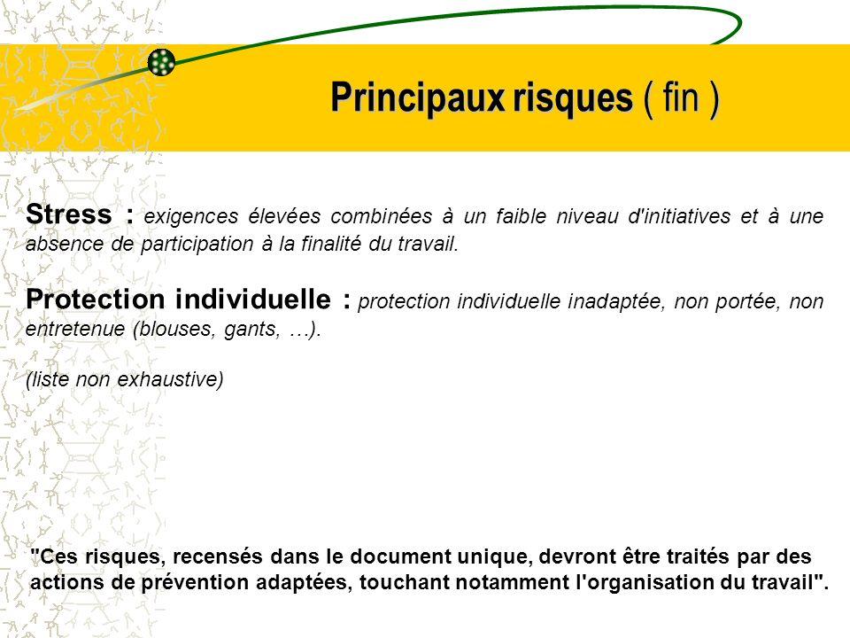 Principaux risques ( fin ) Stress : exigences élevées combinées à un faible niveau d'initiatives et à une absence de participation à la finalité du tr