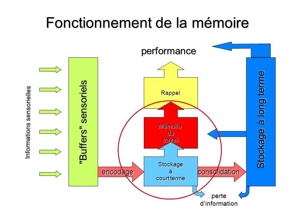 Fonctionnement de la mémoire Rappel Mémoiredetravail Informations sensorielles