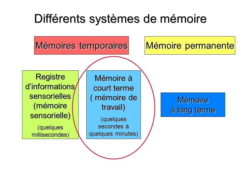 Registredinformationssensorielles(mémoiresensorielle) (quelques millisecondes) Différents systèmes de mémoire Mémoire permanente Mémoires temporaires