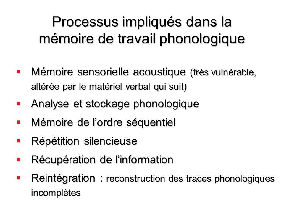 Processus impliqués dans la mémoire de travail phonologique Mémoire sensorielle acoustique (très vulnérable, altérée par le matériel verbal qui suit)