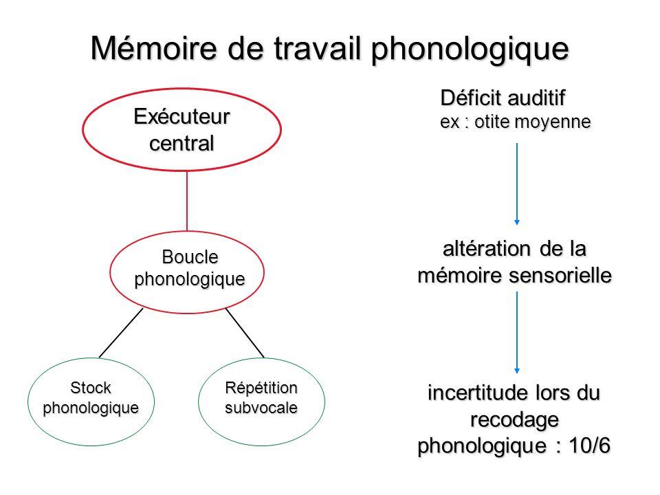 Mémoire de travail phonologique Exécuteur central Boucle phonologique Stock phonologique Répétition subvocale Déficit auditif ex : otite moyenne altér