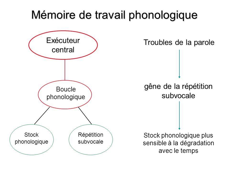 Exécuteur central Boucle phonologique Stock phonologique Répétition subvocale Troubles de la parole gêne de la répétition subvocale Stock phonologique