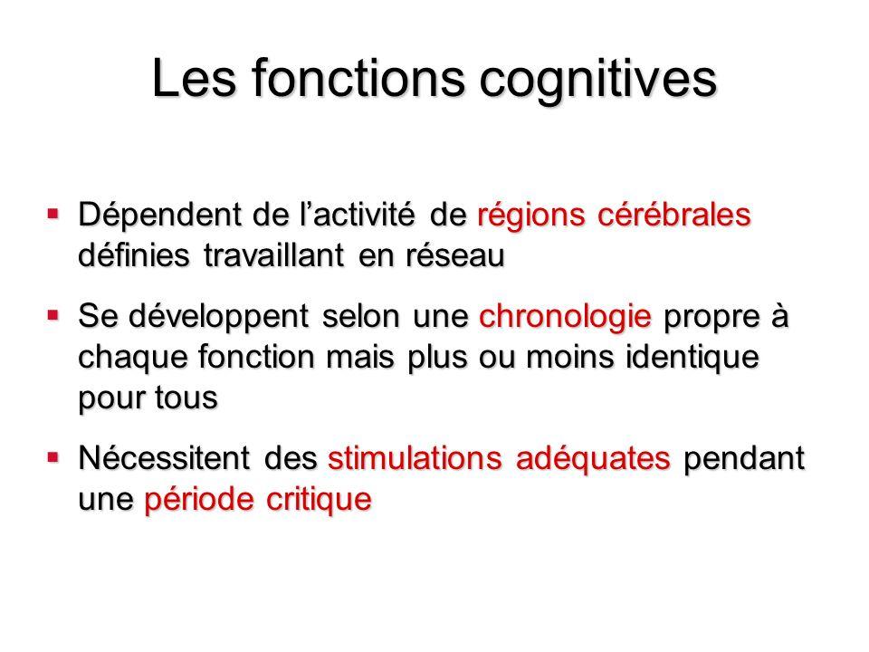 Développement des fonctions cognitives Une base de connaissance acquise à une vitesse incroyable 1ère année : ensemble cohérent de connaissance sur le monde physique dans la 3ème année: connaissance des principes dorganisation des catégories et des espèces Lacquisition de ce vaste ensemble de connaissances repose sur des mécanismes cognitifs de base comme la perception et la mémoire dans la période néonatale des mécanismes cognitifs de base comme la perception et la mémoire dans la période néonatale des processus cognitifs de plus haut niveau comme le raisonnement et la résolution de problèmes mis en évidence dès lâge de 6 mois des processus cognitifs de plus haut niveau comme le raisonnement et la résolution de problèmes mis en évidence dès lâge de 6 mois