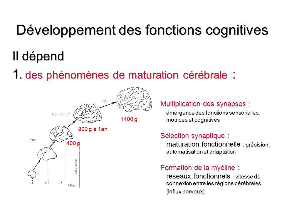Les troubles cognitifs spécifiques Lésions périnatales localisées Lésions périnatales localisées Acquis consécutifs à une lésion survenant après une période de développement normal Acquis consécutifs à une lésion survenant après une période de développement normal Développementaux : dys Développementaux : dys –limités à un domaine cognitif ( langage, geste, calcul, lecture) –en labsence de retard global de développement –dorigine neuro développementale liée à un probable dysfonctionnement cérébral localisé –entravant les apprentissages