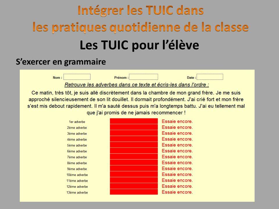 Sexercer en grammaire Les TUIC pour lélève